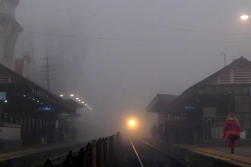paisajes-niebla1
