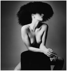 Sieff Cultura inquietaUnknown