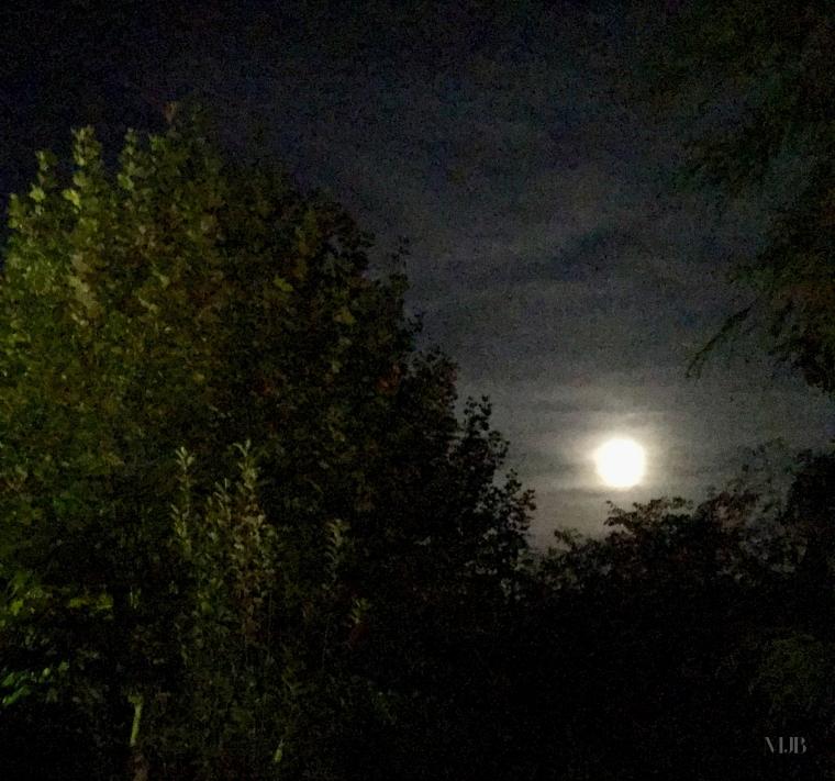 Luna de Octubre IMG_3108